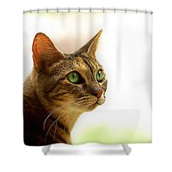 Shower Curtain featuring the photograph Emerald Eyes by Olga Hamilton