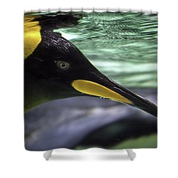 King's Eye Shower Curtain by Ray Warren