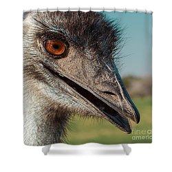 Emu Closeup  Shower Curtain by Robert Frederick
