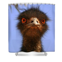 Emu Upfront Shower Curtain