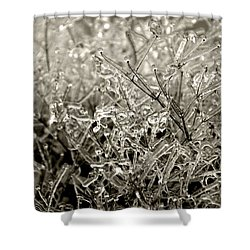 Encased In Ice IIi Shower Curtain