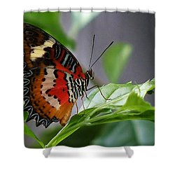 Enchanted Butterfly Shower Curtain