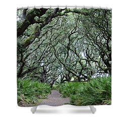 Enchanted Forest Shower Curtain by Laurie Perry