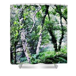 Enchanted Forest. The Kingdom Of Thetrees. Glendalough. Ireland Shower Curtain by Jenny Rainbow