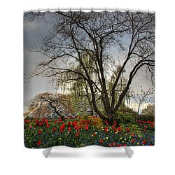 Shower Curtain featuring the photograph Enchanted Garden by Eti Reid