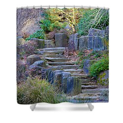 Enchanted Stairway Shower Curtain by Athena Mckinzie