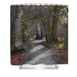 Enchanted Woods Shower Curtain by Linsey Williams