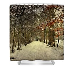 Enchanting Dutch Winter Landscape Shower Curtain
