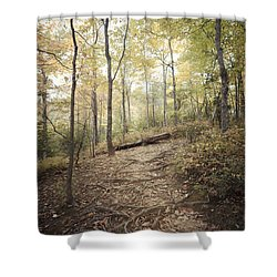 Enchanting Forest Shower Curtain