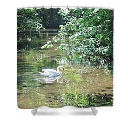 Shower Curtain featuring the photograph Enchantment by Pema Hou