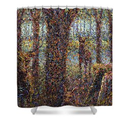 Encounter Shower Curtain by James W Johnson