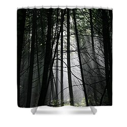 Encounter Of The Vermont Kind No.2 Shower Curtain