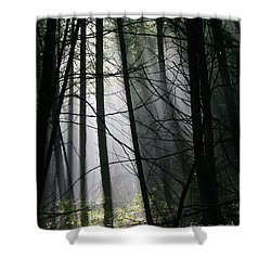Encounters Of The Vermont Kind  Shower Curtain