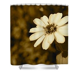 Shower Curtain featuring the photograph End Of Season by Photographic Arts And Design Studio
