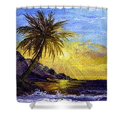 End Of The Day Shower Curtain by Darice Machel McGuire