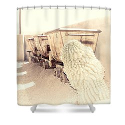 End Of The Line II Shower Curtain
