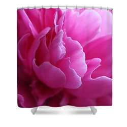 End Of The World Pink Shower Curtain