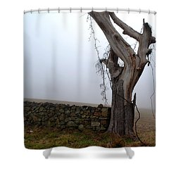 Shower Curtain featuring the photograph End Point by Carlee Ojeda