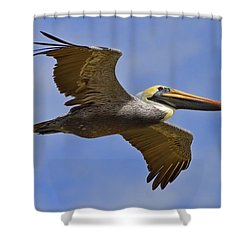 Shower Curtain featuring the photograph Endangered No More by Gary Holmes
