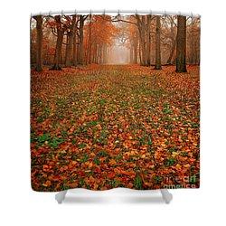 Endless Autumn Shower Curtain by Jacky Gerritsen