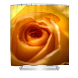 Endless Beauty Shower Curtain by Denyse Duhaime
