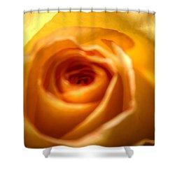 Endless Beauty Shower Curtain