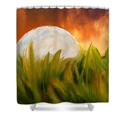 Endless Pursuit Shower Curtain by Lourry Legarde