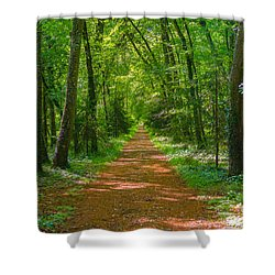 Endless Trail Into The Forest Shower Curtain by Nila Newsom