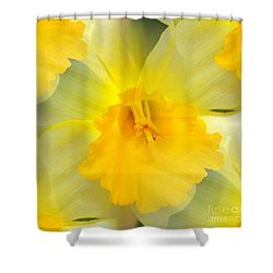 Endless Yellow Daffodil Shower Curtain