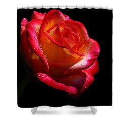 Shower Curtain featuring the photograph Enflamed by Doug Norkum