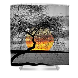 English Bay Sunset Shower Curtain by Brian Chase