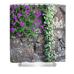 English Garden Wall Shower Curtain by Bev Conover