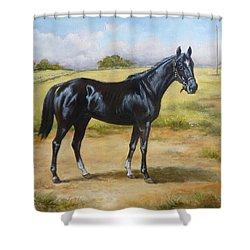 English Horse - Black Huzar Shower Curtain