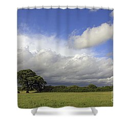 English Oak Under Stormy Skies Shower Curtain