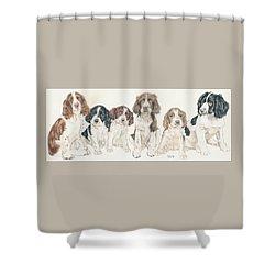 English Springer Spaniel Puppies Shower Curtain