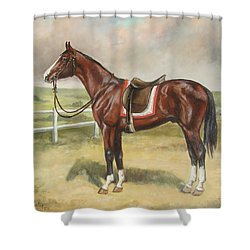 English Stallion Dark Bay Shower Curtain
