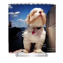 Enjoy Life Shower Curtain by M West
