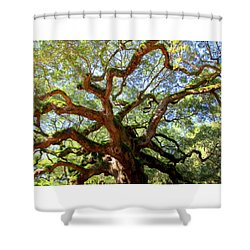 Entangled Beauty Shower Curtain by Karen Wiles