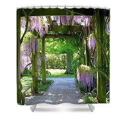 Entranceway To Fantasyland Shower Curtain