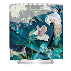 Entropy - Oh My Shower Curtain