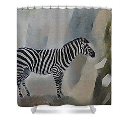 Entropy Shower Curtain by Jukka Nopsanen