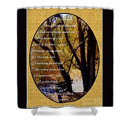 Envisioning Inspirational Shower Curtain