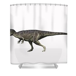 Eocarcharia Dinops, Early Cretaceous Shower Curtain by Nobumichi Tamura