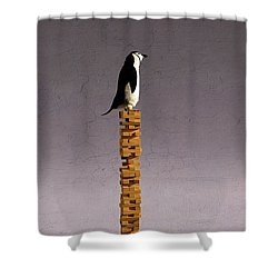 Equilibrium V Shower Curtain