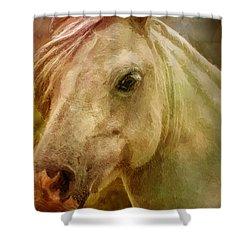Equine Fantasy Shower Curtain by EricaMaxine  Price