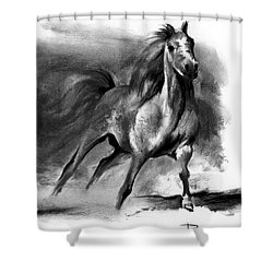 Equine II Shower Curtain