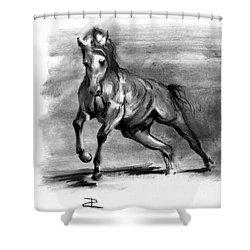 Equine IIi Shower Curtain
