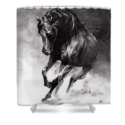 Equine Shower Curtain by Paul Davenport