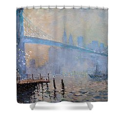 Erbora And The Seagulls Shower Curtain by Ylli Haruni