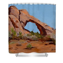 Erosion Shower Curtain by Pattie Wall